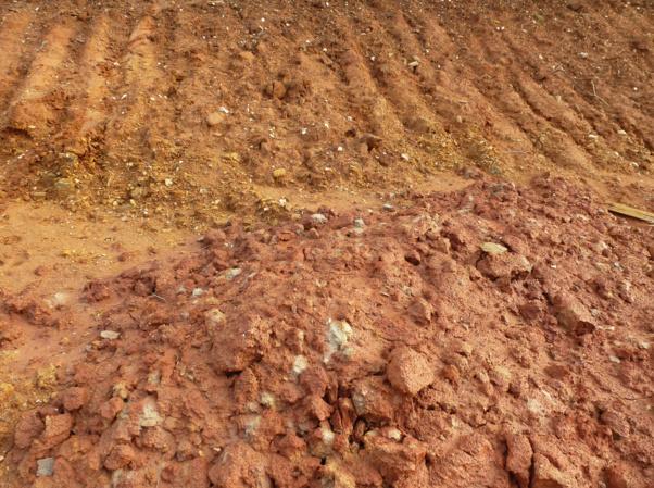 Prélèvement d'argile sur le chantier de Furiani