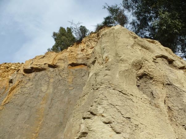 Explorations et prélèvements autour d'Ajaccio