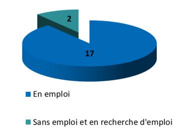 Situation professionnelle des dipl?m?s de L3 Tourisme 2012 en effectifs