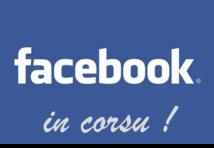 Facebook in corsu : perchè a Fundazione duvia arricà a so cuntribuzione ?