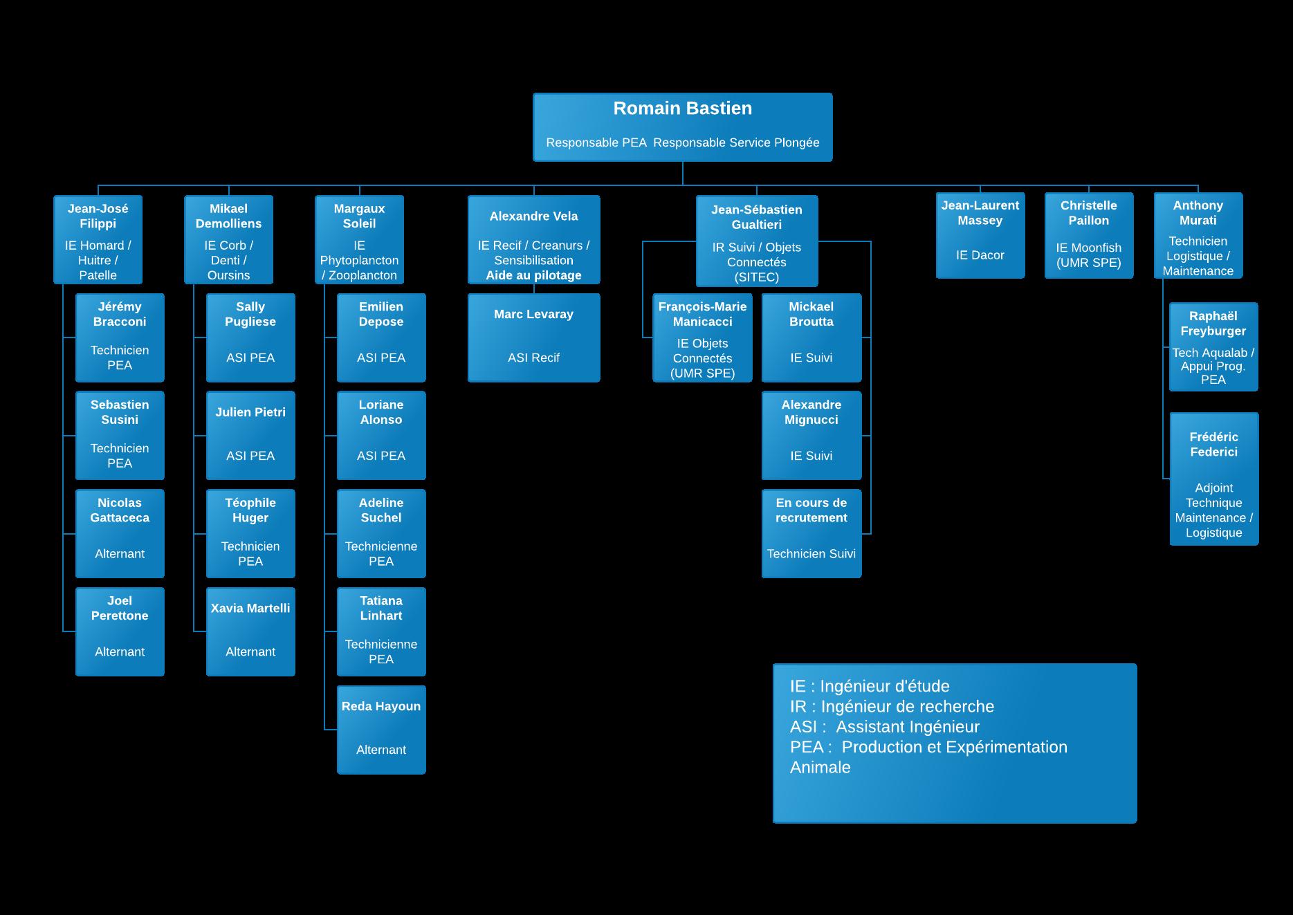 Organigramme1